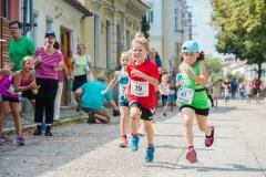 2016_Langenloiser-Weinstadtlauf-043