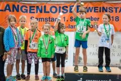 1_2018.09.01_Langenloiser-Weinstadtlauf_2018-035